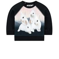 Molo t-shirt illustrata